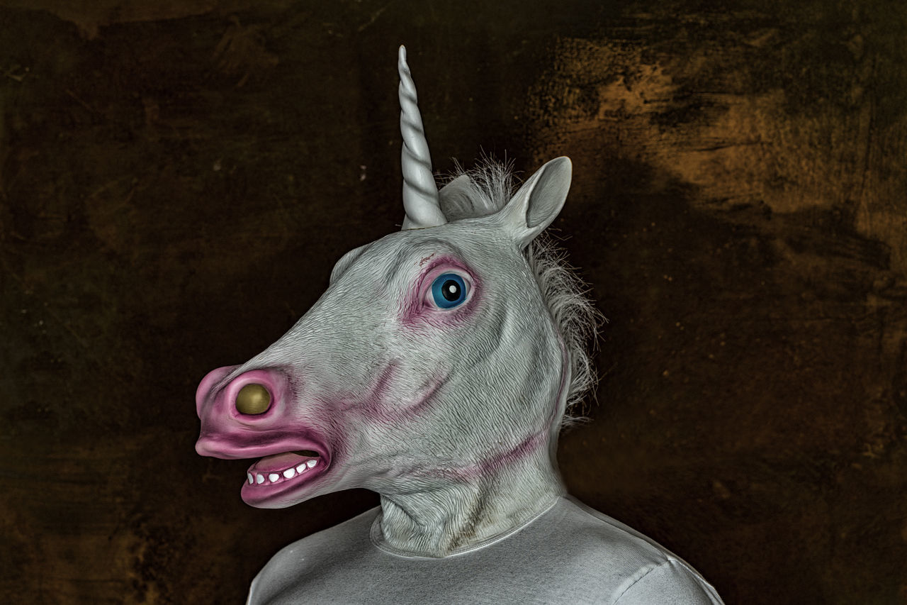 My Hallowenn costume Animal Body Part Animal Head  Close-up Dark Art Halloween Halloween Horrors Halloween2016 Horror Horror Portrait Portrait Unicorn