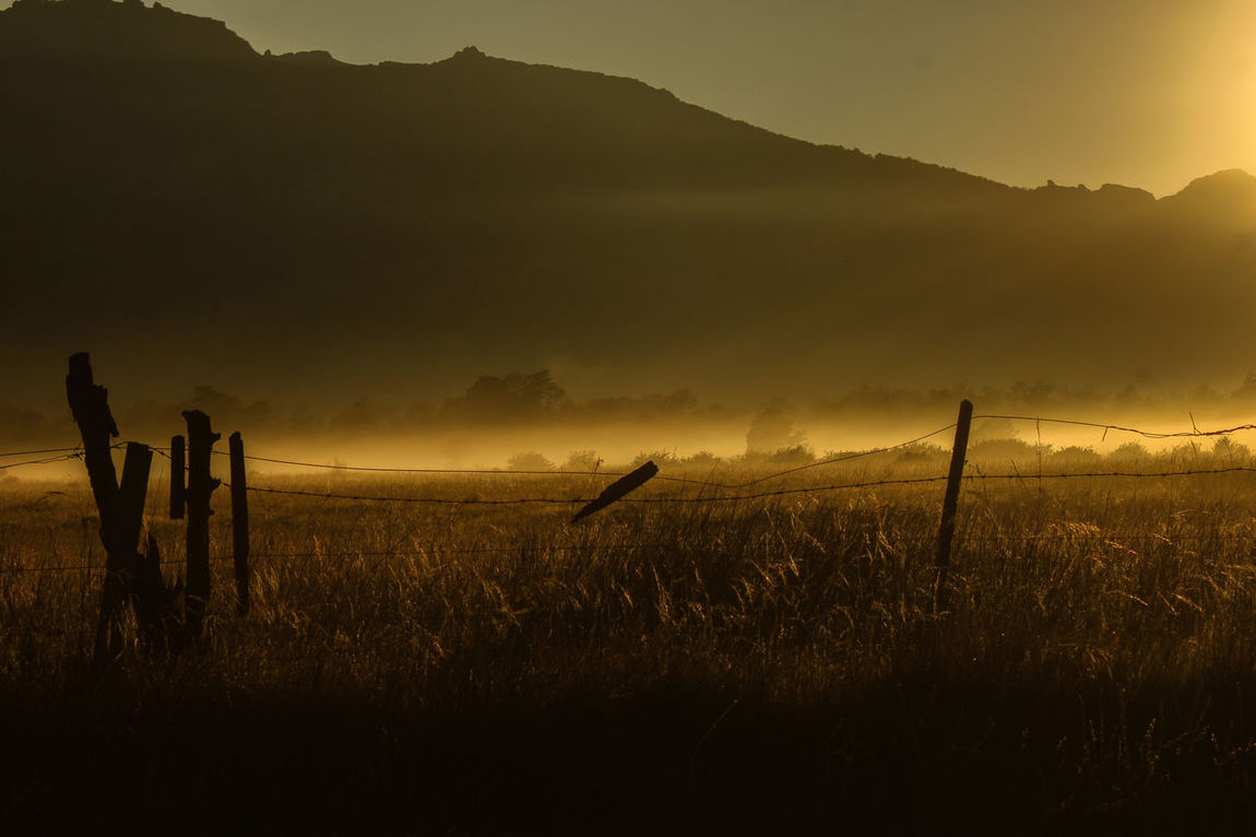 Amaneceres Amaneciendo Beauty In Nature Bruma Del Amanecer Day Growth Landscape Mountain Nature No People Outdoors Rural Scene Sand Dune Scenics Smok On The Grass Sunset