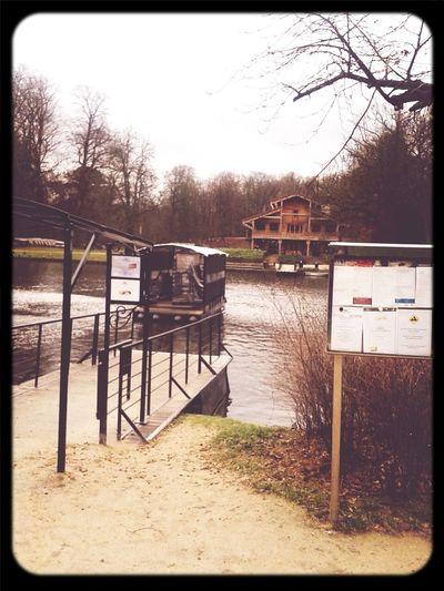 Brussels Bois De La Cambre La Cambre étang