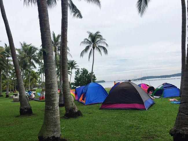 The Great Outdoors - 2016 EyeEm Awards IPhoneography EyeEm Gallery Camping Camp Site Eyeem Singapore