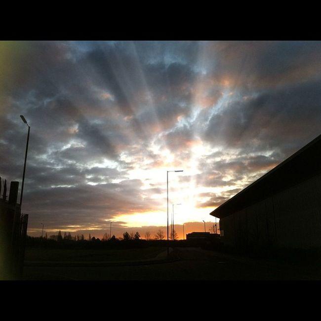 #sky #ukigers #bedsigers #igers_uk # Sky Ukigers Bedsigers Igers_uk