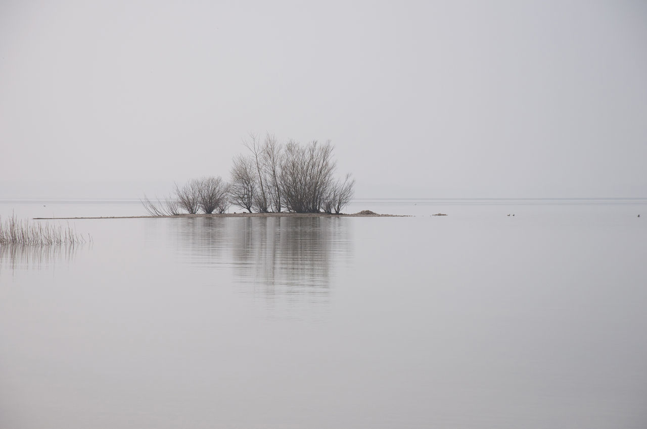 chiemsee insel 1 Bare Tree Beauty In Nature Day Fog Lake Landscape Nature No People Outdoors Reflection Scenics Silence Of Nature Single Tree Sky Tree Trees Water Wideness