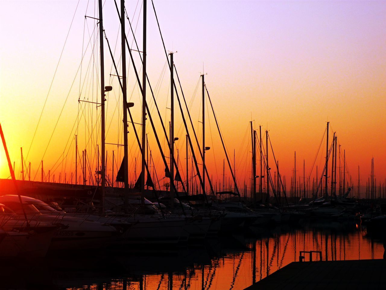Beauty In Nature Day Harbor Mast Mode Of Transport Moored Nature Nautical Vessel No People Outdoors Sea Sky Sun Sunset Transportation Water Yacht EyeEmNewHere
