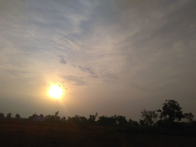 Shoot in early morning , Capturing moments of birds that tries to cross the sunlight 😄😘 Sunlight Morning Light light and reflection Birds In The Sky Skylove Nature Happy :) Day Beauty In Nature No People EyeEm Nature Lover EyeEm Best Shots Cloud And Sky