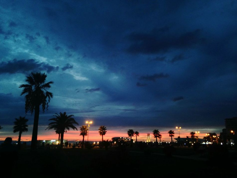 Palm Tree City Tree Dramatic Sky Cloud - Sky Illuminated Igniting No People Cityscape Silhouette Night Astronomy Milky Way Nature Architecture Outdoors Lightning Vacations Sky Mobile Phone Durres Albania Durres Durresi