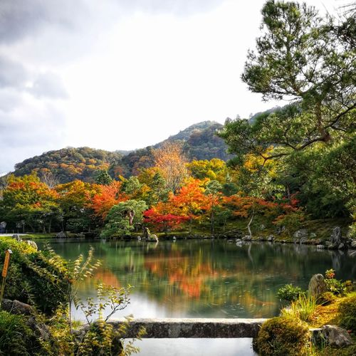 Garden Outdoors Japan Landscape No People Lagoon