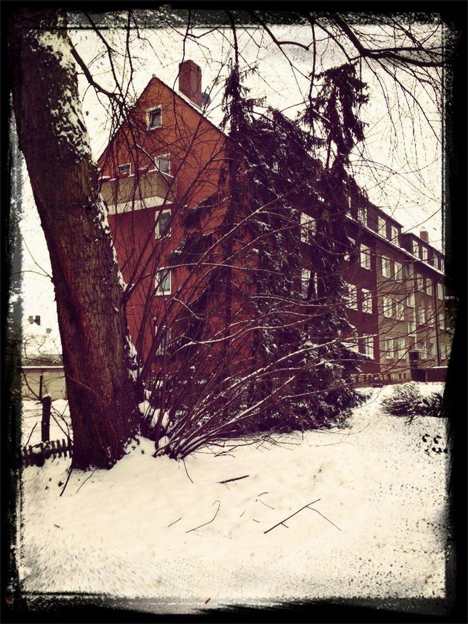 Springtime Snow EyeEm Best Shots Street Photography EyeEm Nature Lover