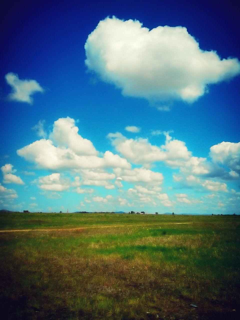 landscape, freedom, field, nature, blue sky, sky, grass, no people