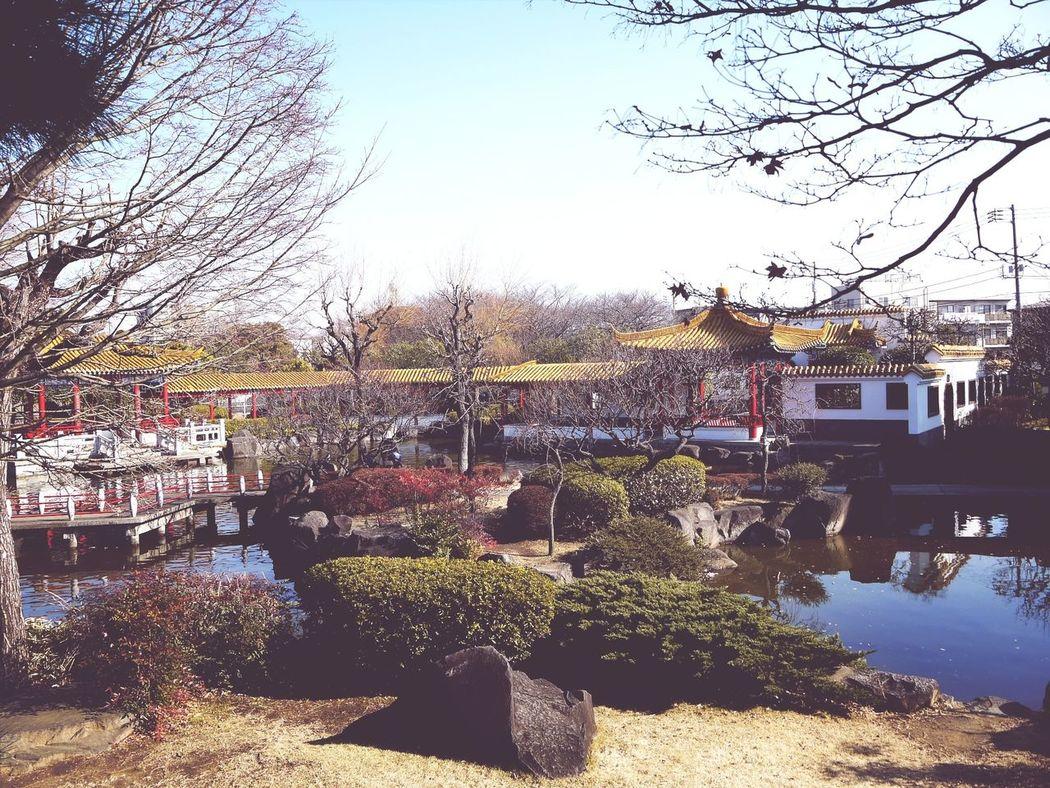 Chinese Garden Japan Kawasakicity Lumix last week^_^
