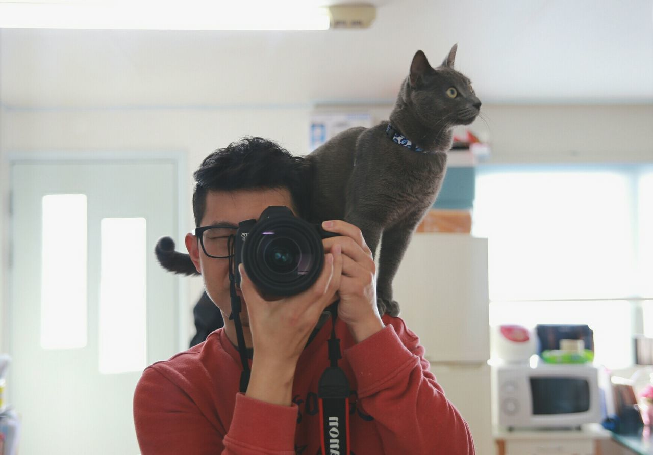 Photo time with my cat!! :) Take Photos My Cats Selfie ✌ Russian Blue Cat Lovelycat