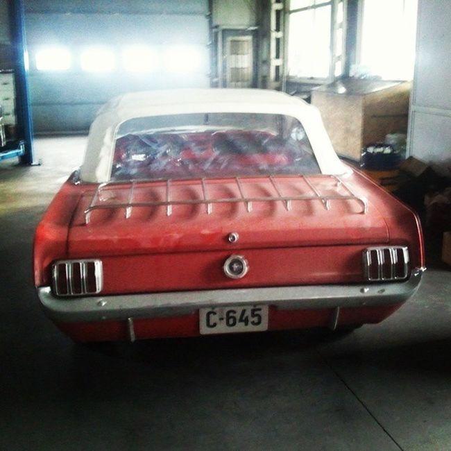 Fordmustang Mustang Oldmustang Bogdann2309