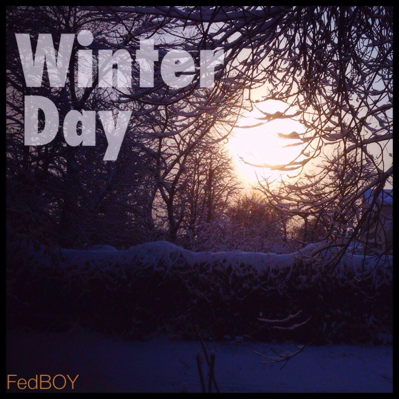 Зимний день чудесный зимний день❄⛄🌞 First Eyeem Photo