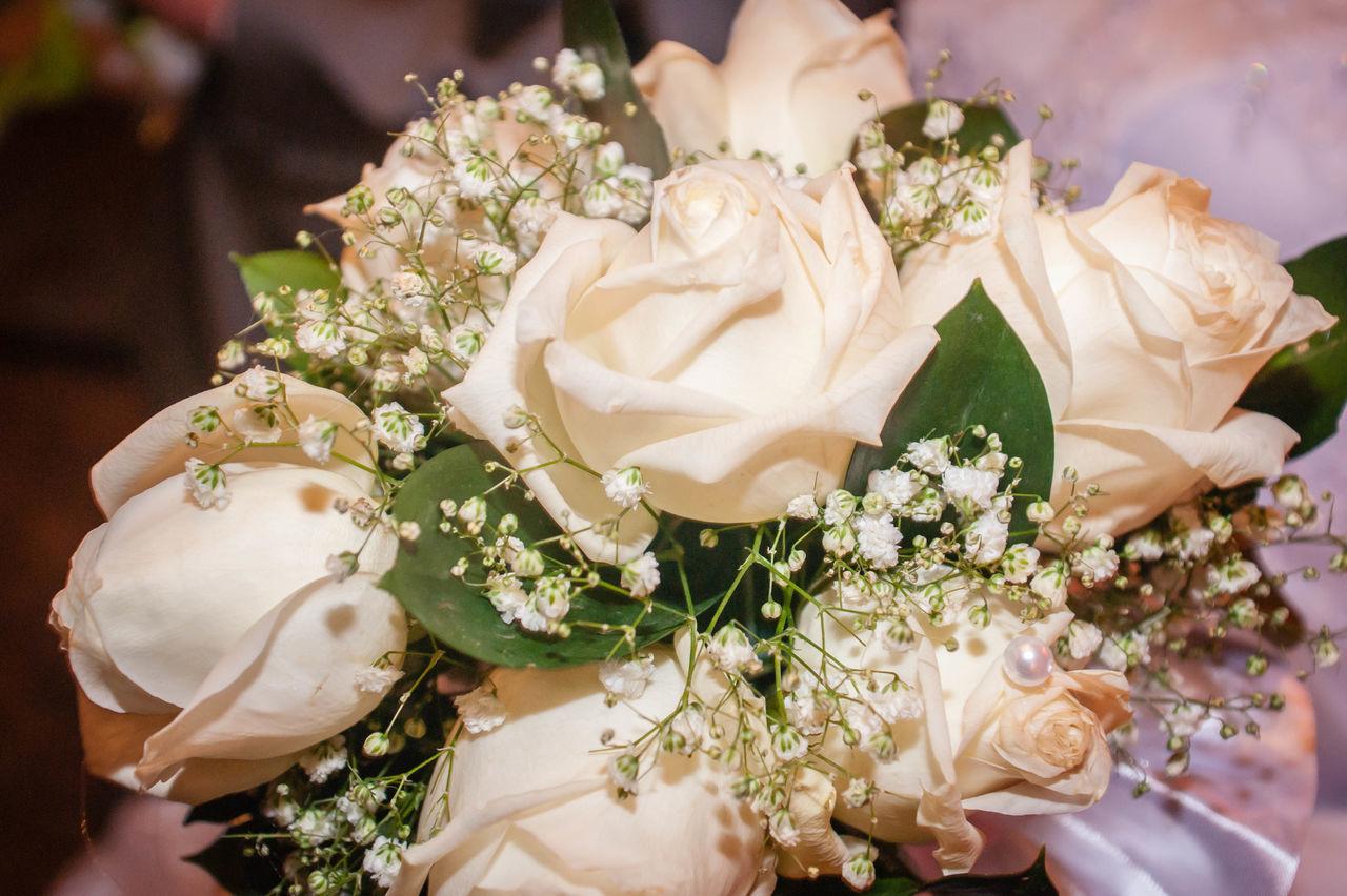 Flowers White Roses Marriage  Novokuznetsk Kuzbass Siberia Russia
