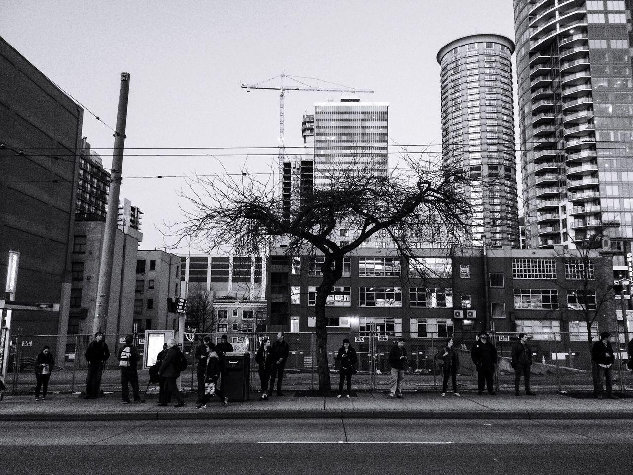 Beautiful stock photos of seattle, Bus Stop, Capital Cities, City, City Life