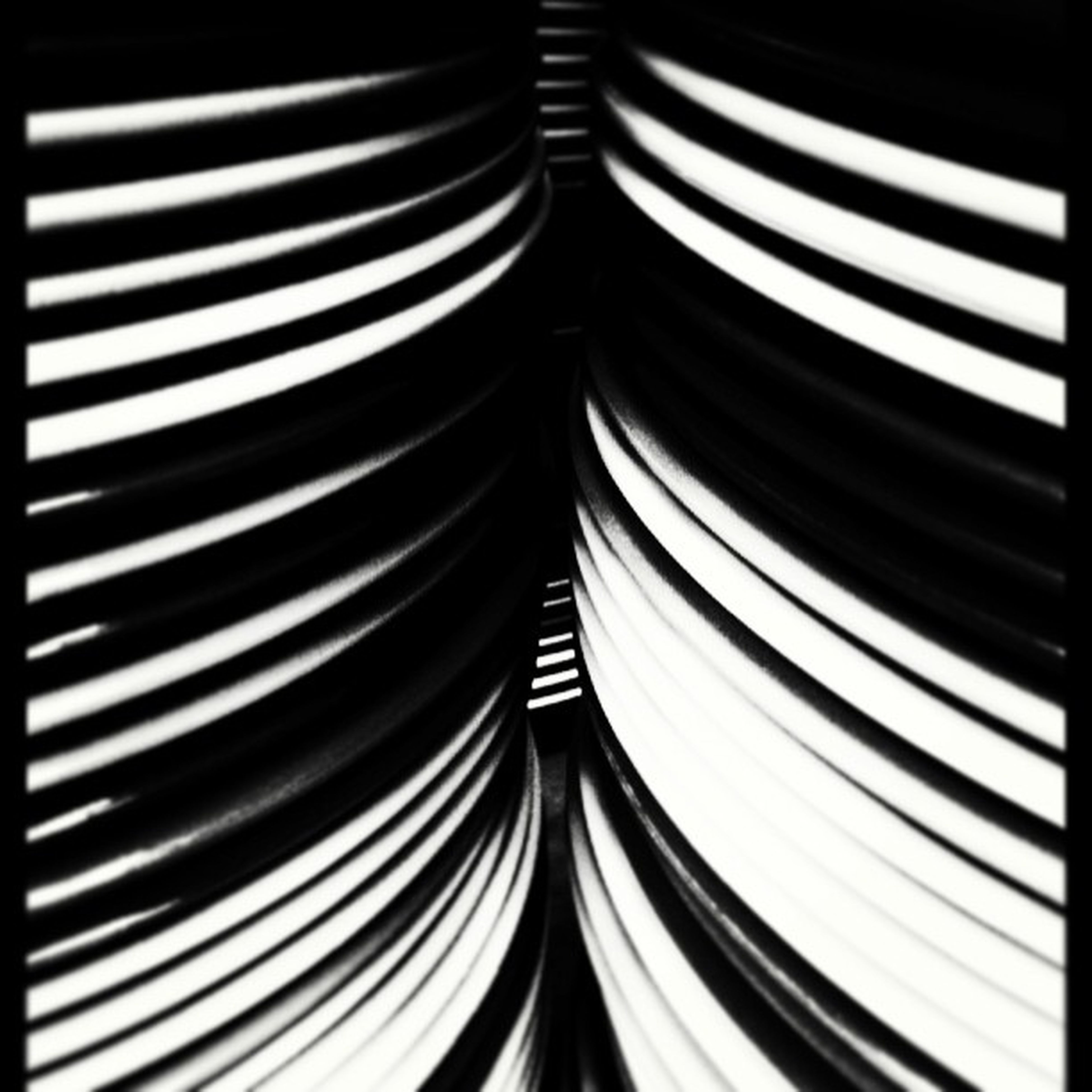 transfer print, auto post production filter, indoors, pattern, repetition, backgrounds, full frame, close-up, in a row, design, no people, diminishing perspective, studio shot, striped, abstract, detail, textured, white color, black background, blinds