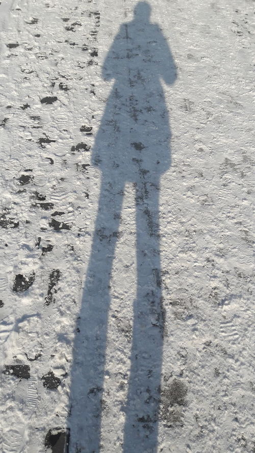 Shadow Focus On Shadow Long Shadow - Shadow Real People One Person Shadow shadow in snow Snow In The City White Color Winter_collection Snow ❄ Snowing Snow Day Snow In Sunshine Wintertime Snow Winter Cold Temperature