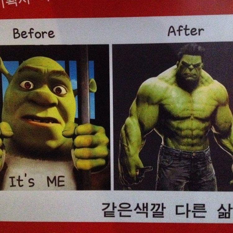 Green Monster Humor Korean Hulk Shrek Greenmonster