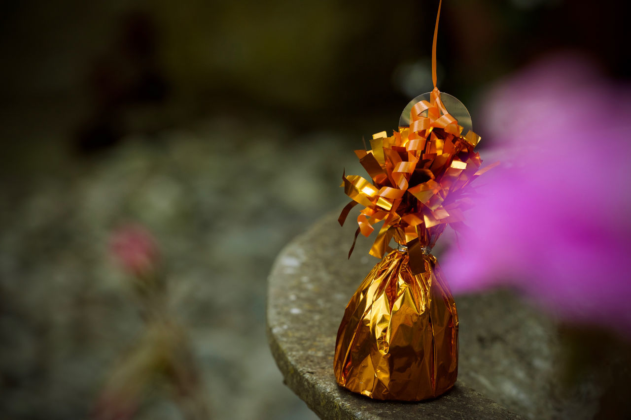 wrapped gift Bokeh Chocolate Courious Excitement Flower Gift Guess Guess What ...? Selective Focus Stone Wrapped