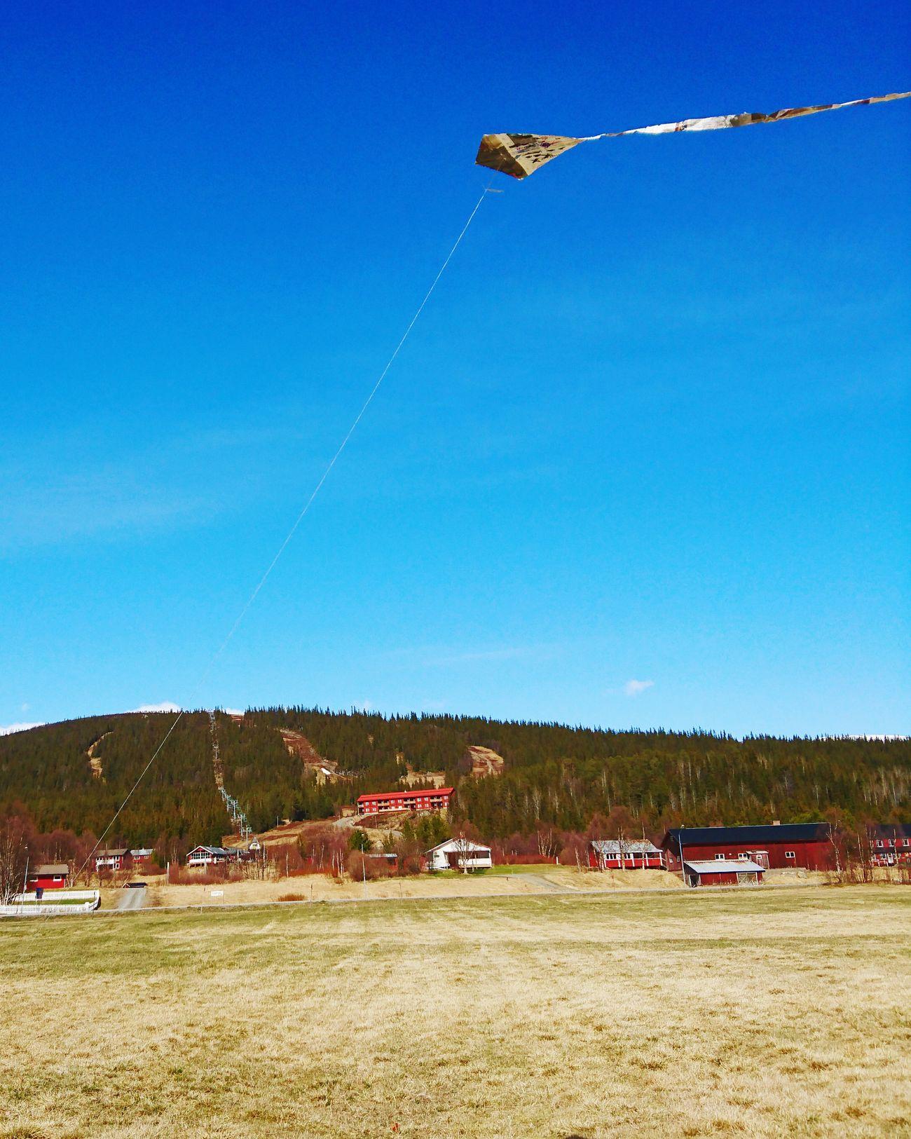 Flying A Kite Windy Day Blue Sky