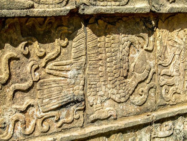 Ancient Ancient Civilization Archaeological Sites Archaeology Chichen Itza Close-up Glyph History Kukulkan Mayan Mayan Ruins Mayan Wonders Quetzal Stone Material Textured  The Past Weathered Yucatan Mexico Yucatan Peninsula Yúcatan