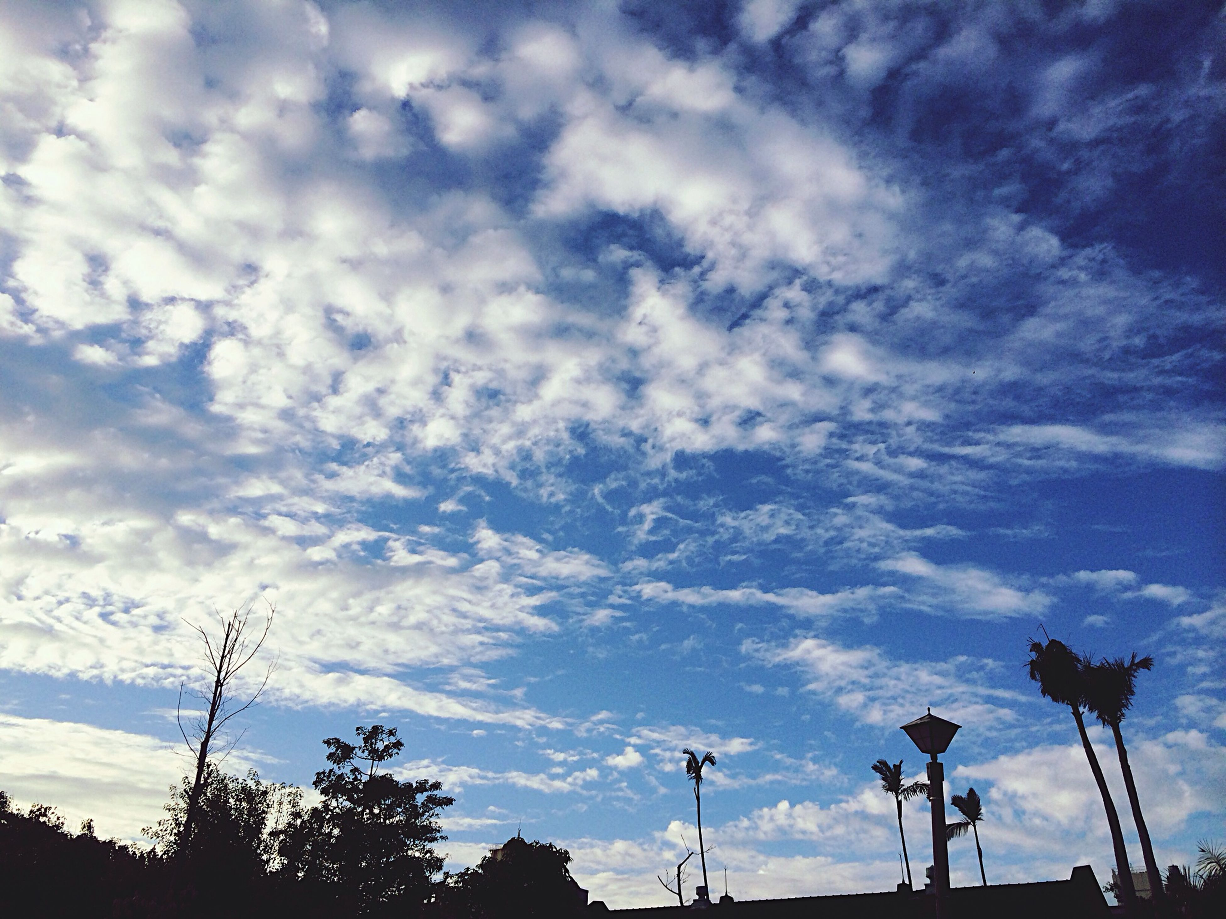 low angle view, cloud - sky, sky, no people, outdoors, nature, day