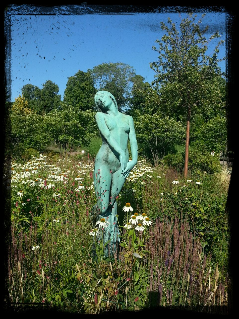 human representation, statue, sculpture, male likeness, art and craft, tree, no people, day, growth, outdoors, sky, nature