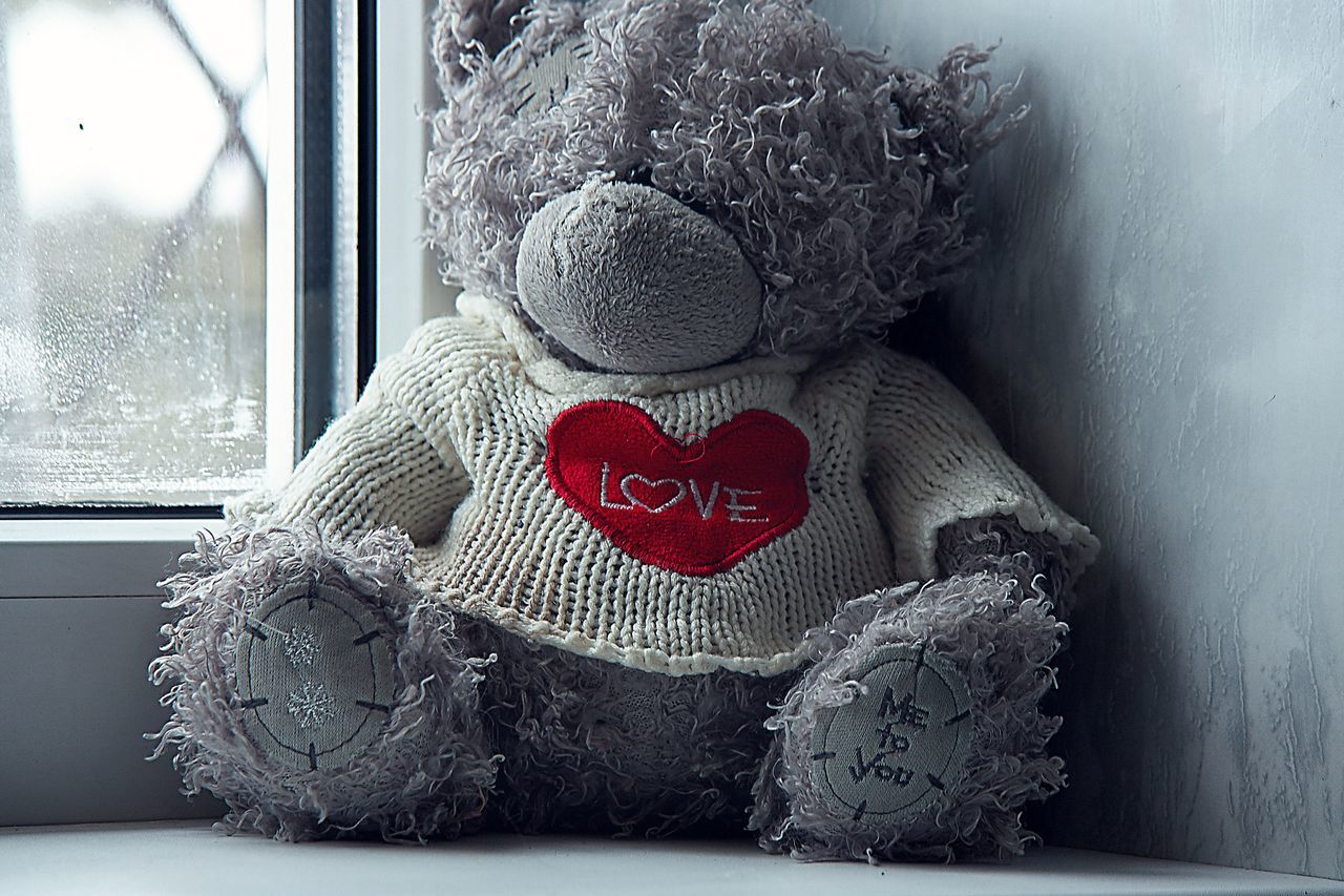 "At someone today ""Valentine's Day. And at someone today just Tuesday 🤔 Not so important what today day.... Just you love every day without cause, you appreciate and take care each other . Teddy Bear Heart Shape Window Love Stuffed Toy Toy Softness EyeEm Best Shots Russia Selective Focus"