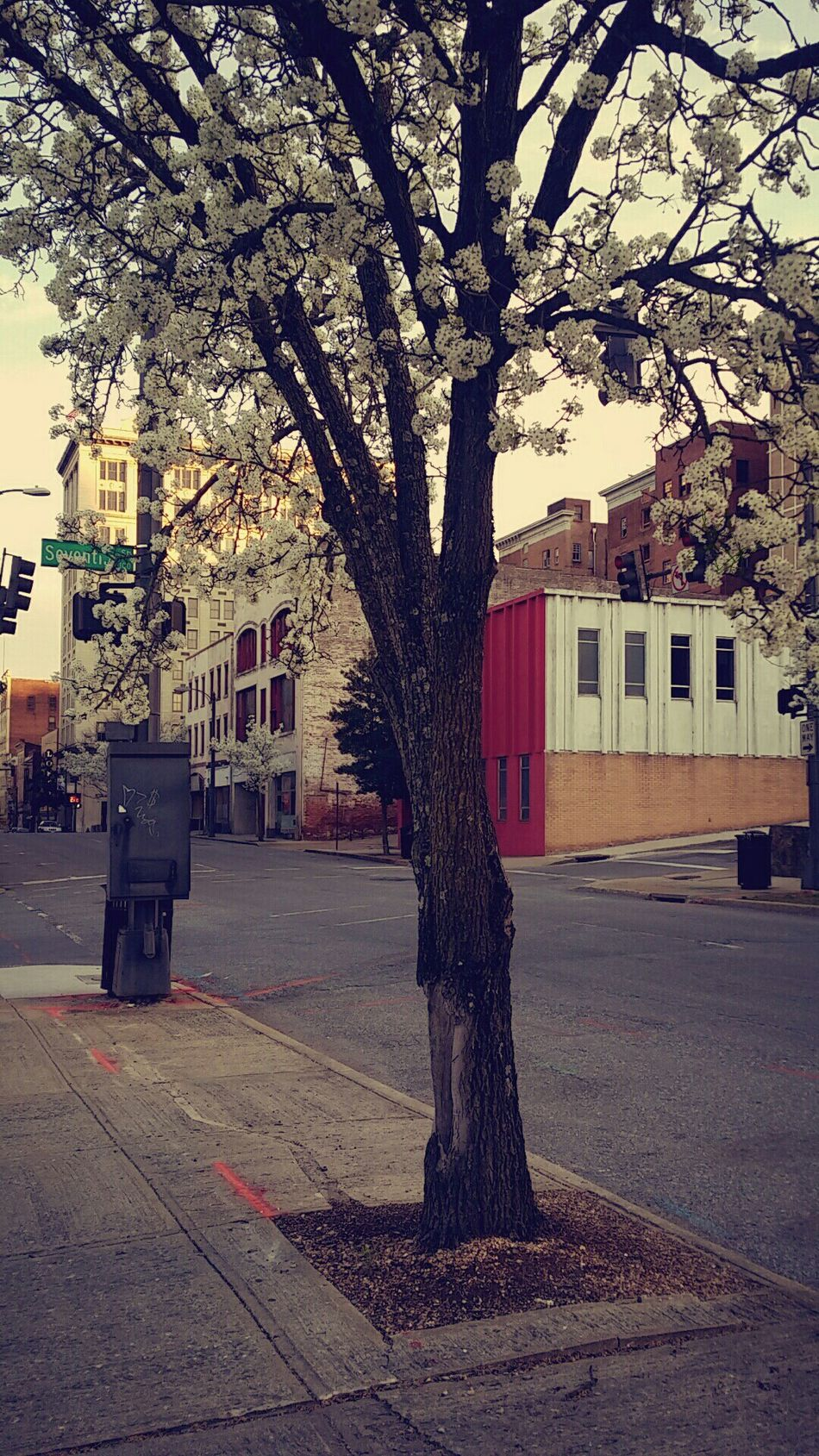 Great day to be downtown. Downtown Adventure Lynchburg  Virginia Peaceful Vibrant Town