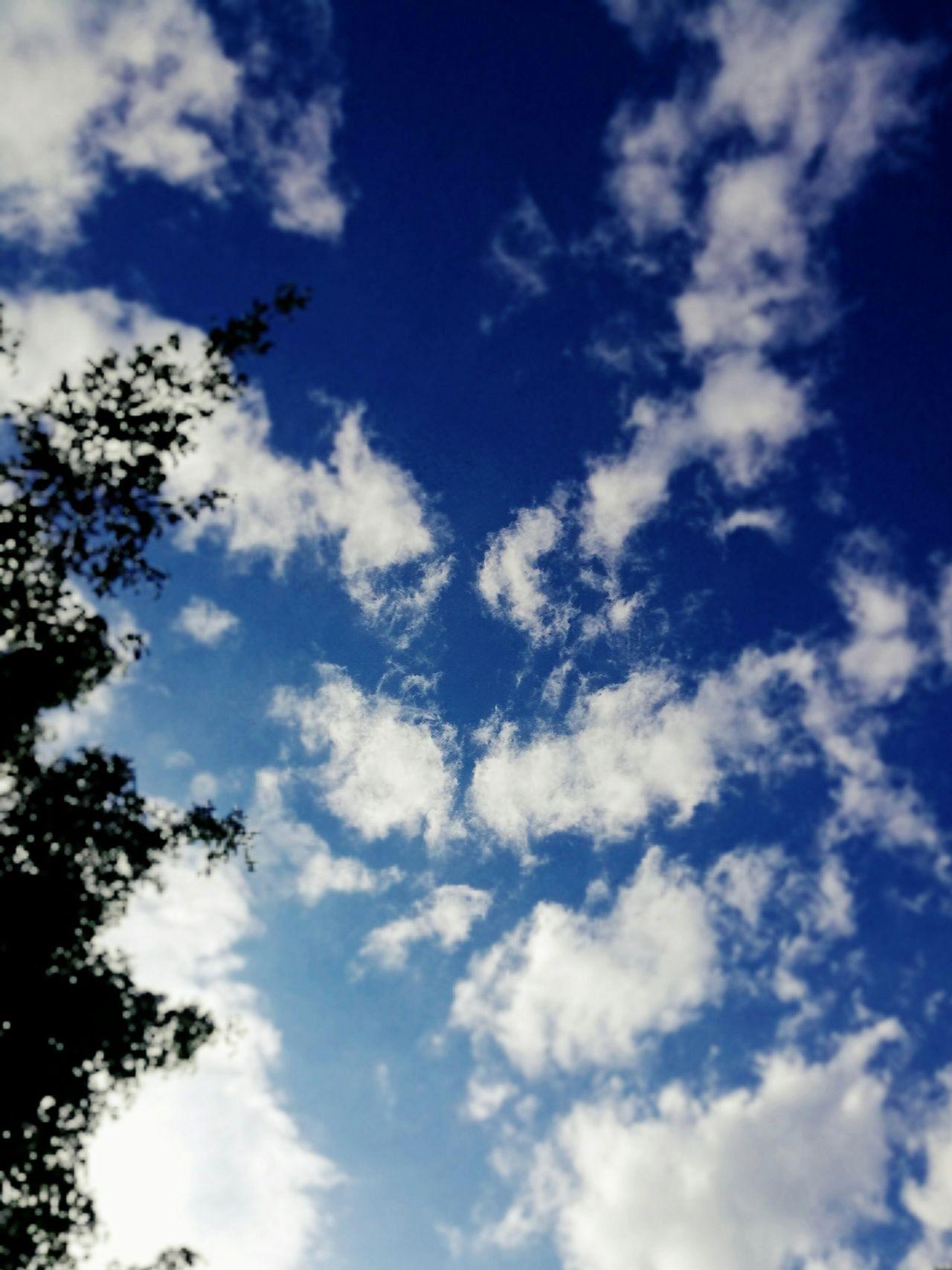 BLUE SKY. Years quiet good . First Eyeem Photo