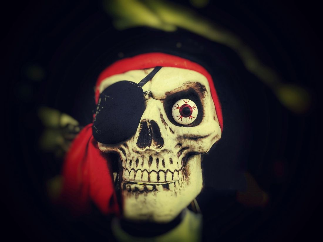 Dead Death Eye Patch Halloween Horror Human Face Human Skull Mask Patch Pirate Pirate Skulls Scary Scary Face Scary Faces Skeleton Skeletons Skull Skulls Spooky Teeth The Magic Mission