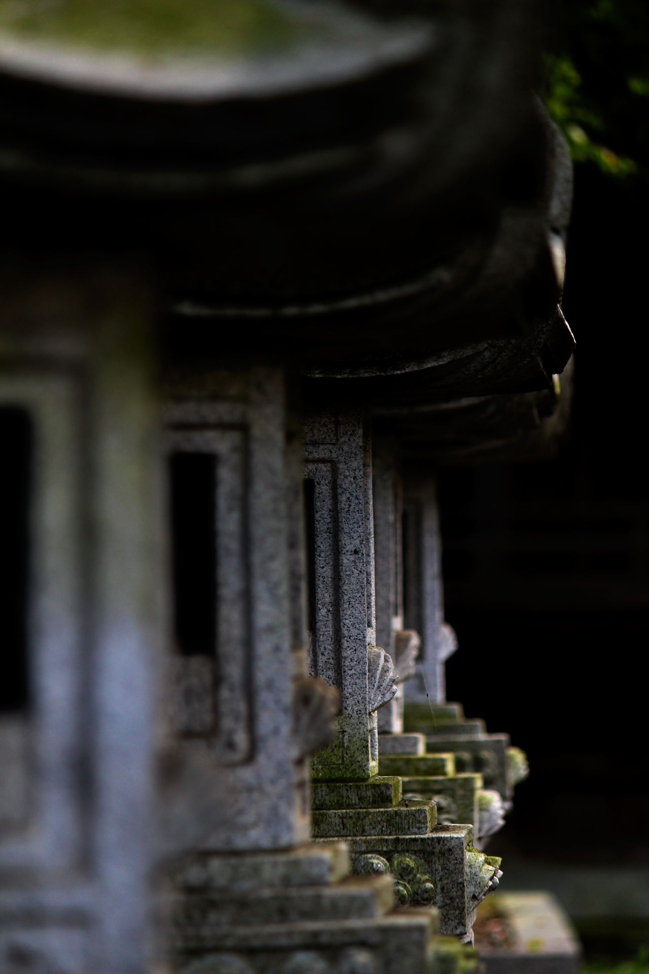 EyeEm Gallery Getting Inspired Historic Japan Light And Shadow Moss Shrine Stone Lanterns Taking Pictures