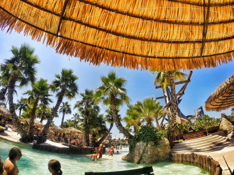 Scenics Water Day Palm Trees Aqualandia Jesolo Italy Paradise Pool Waterpark Eyemphotography Worldplaces Photography Gopro Goprotravel Places Traveladdict Photo Chillout Chilltypeofday Palms Woohoooo!! Outdoors No People Waterworld
