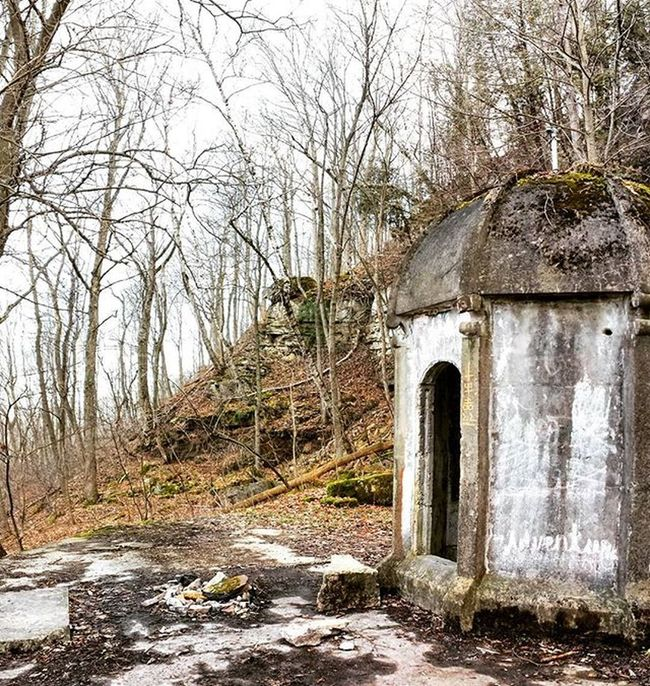 A little bit of a strange find on our walk today. Walk Walking Strange Creepy Beautiful Abandon Abandoned Old Grownover Ontario Southernontario Brucepeninsula Brucetrail Trail Trailwalk Trailwalking Woods Forest Forestwalk Walkinthewoods Walkthroughthewoods Walkintheforest Manmade