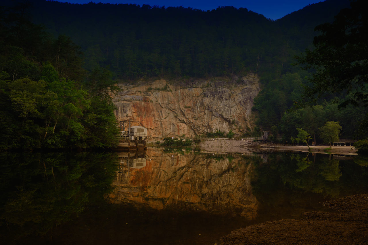 tree, reflection, nature, outdoors, forest, no people, mountain, water, day