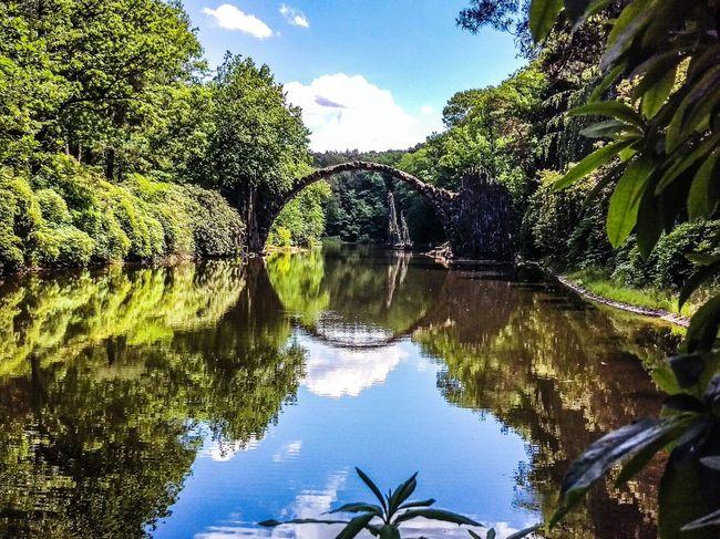 A special place Landscape Summer Park Kromlau Kromlauer Park Landscape_photography Bridge Rakotzbridge