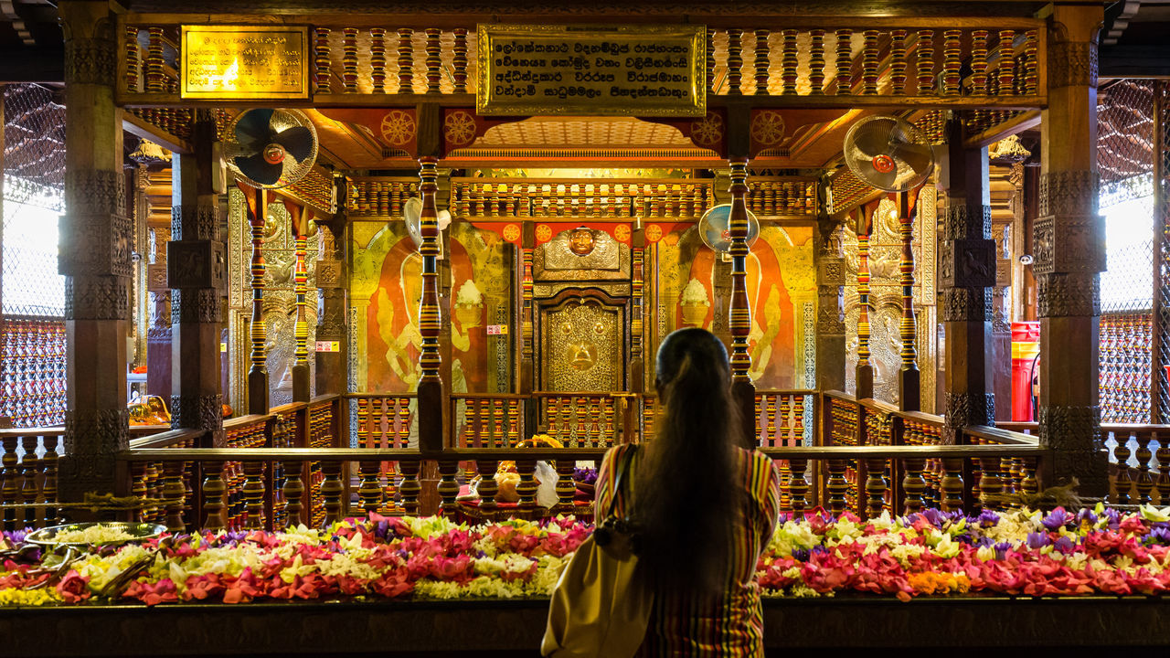 Sri Dalada Maligawa, Relic of the tooth of the Buddha, Kandy, Sri Lanka Buddha Buddha Statue Buddhism Buddhist Temple Ceremony Famous Place Flower Holy Place Of Worship Praying Rear View Relict Religion Sacred Sanctuary  Shrine Spirituality Sri Lanka Sri Lankan Temple Tooth Tourism