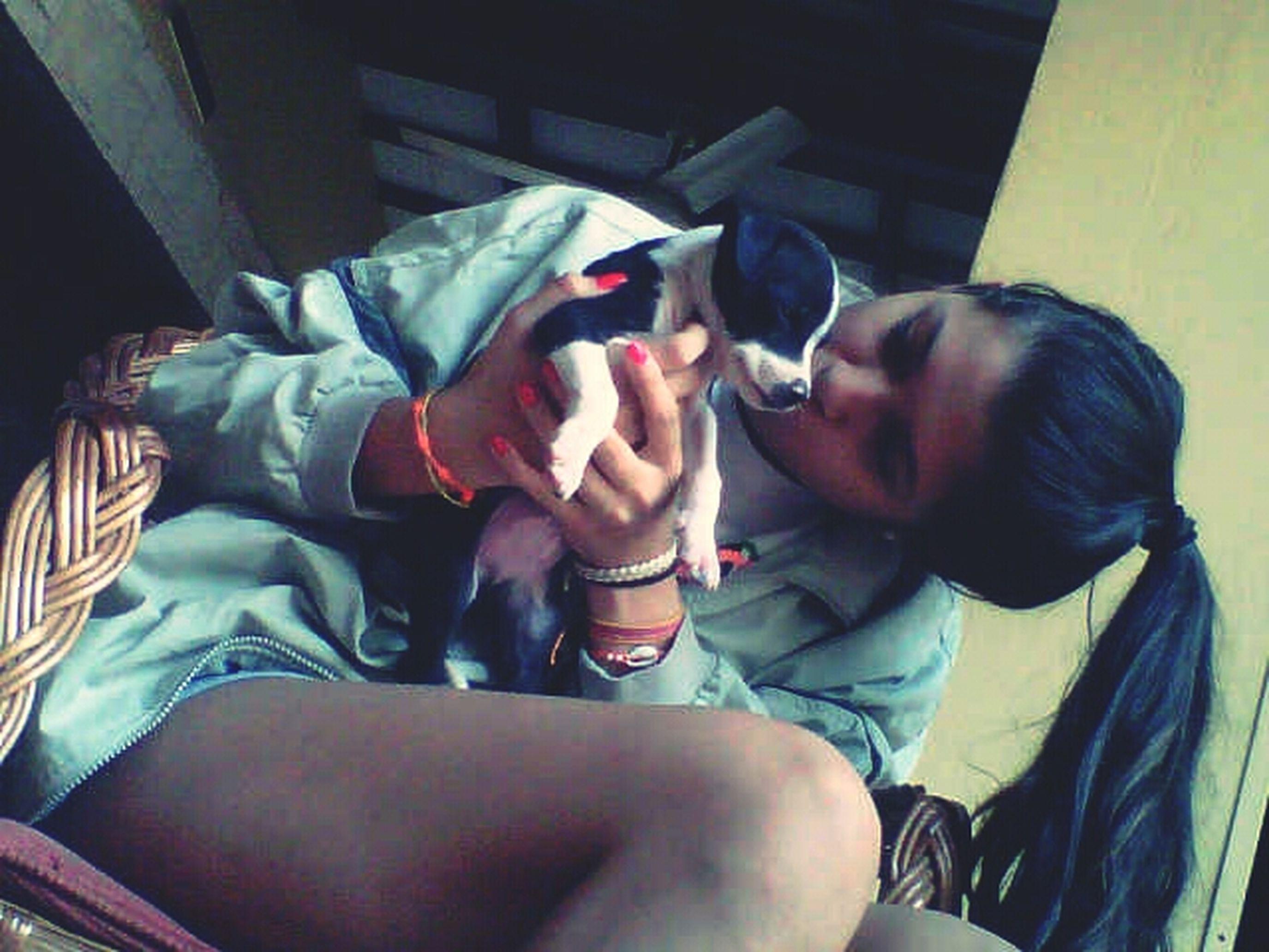 Que seas asi de nuevo♥ McCaw My Pitbull My Lovely Dog