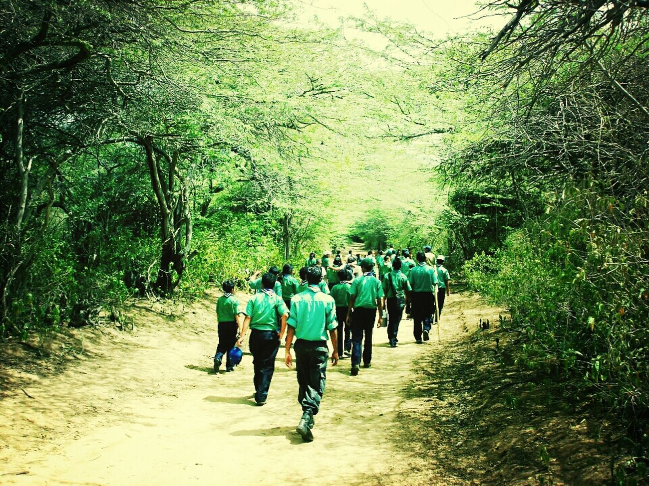 Scouts <3 De Caminata Santa Ana