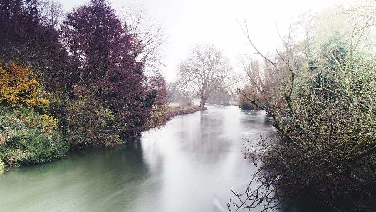 Tree Water Nature Scenics Beauty In Nature Tranquility No People River Outdoors Day Bridge - Man Made Structure Sky Romsey, UK Misty Morning Messing Around EyeEm Best Shots The Eyes Are The Windows To The Soul Autumn Colors