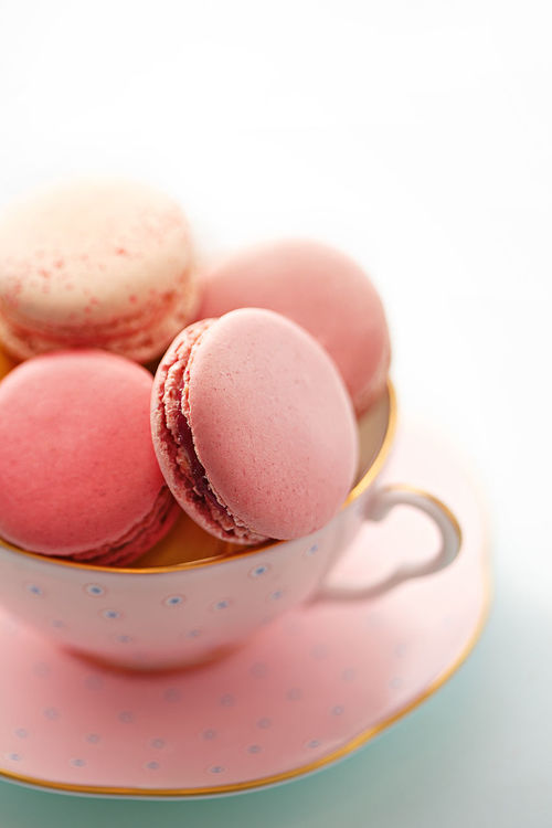 Cup Food Food And Drink Frame French Green Macaron Macarons No People Old Style Pastel Pink Pink Color Vintage