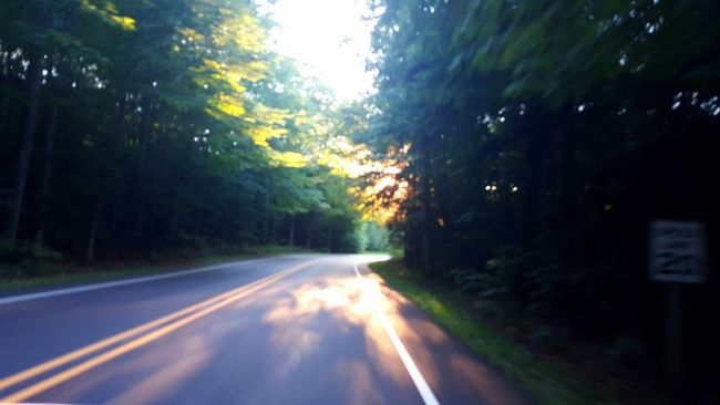 Scenic Road Blurry Blurred Motion Driving Blurry On Purpose Scenic Drive Scenic Route Road Curvy Road Forest Woods Summer Road Trip Shade Michigan