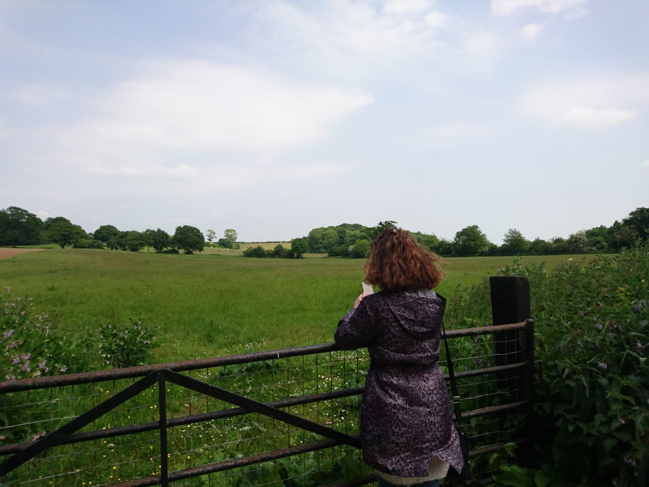Casual Clothing Constablecountry Essex Field Fieldscape Flatford Mill Gate Gateway Grass Grassy Landscape Leisure Activity Lifestyles Nature Old People Outdoors Pensioner Remote Rural Scene Sheep Sky Solitude Suffolk Tranquility Tree