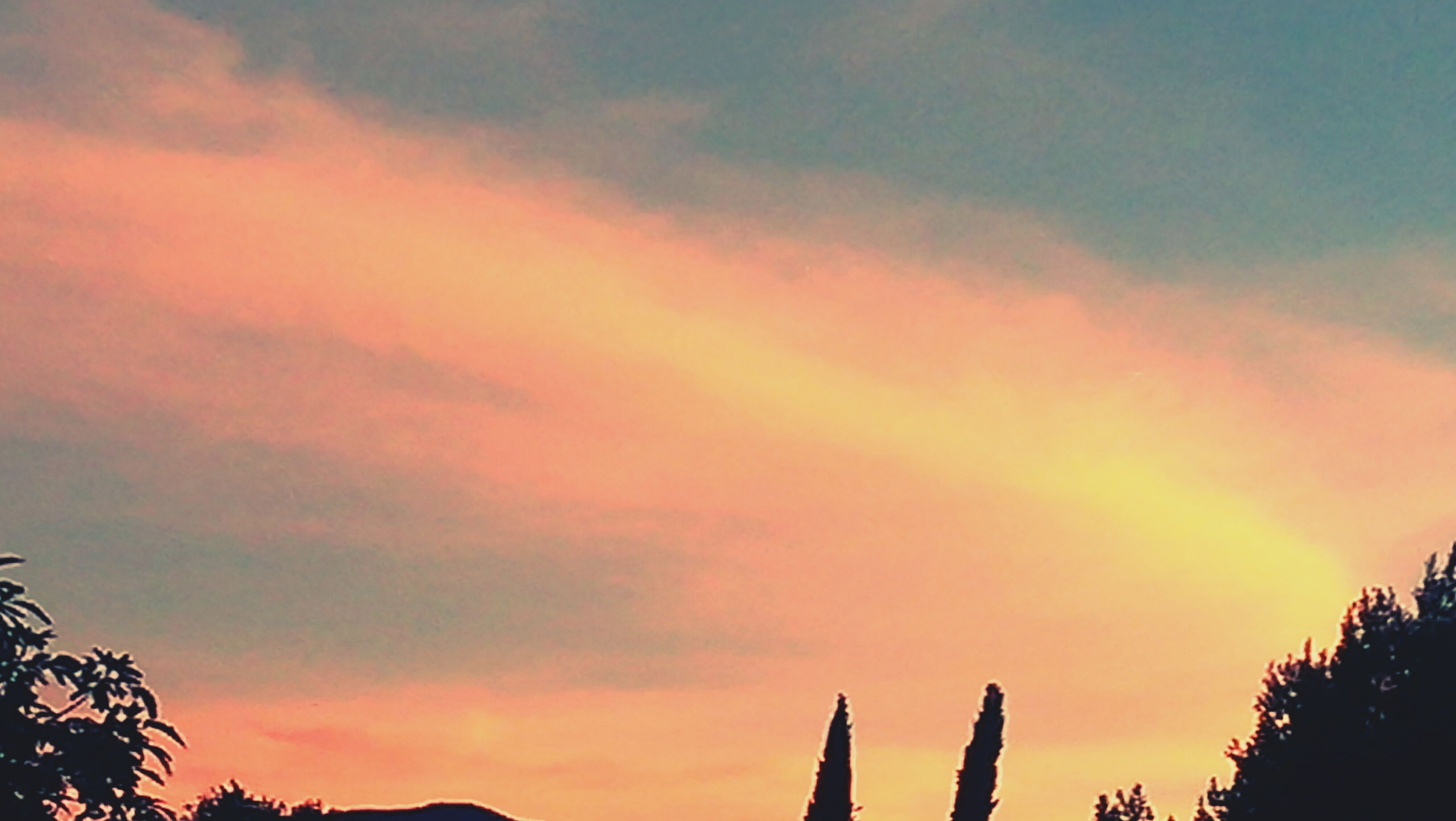 sunset, low angle view, sky, silhouette, orange color, cloud - sky, beauty in nature, tree, nature, scenics, tranquility, cloud, cloudy, high section, tranquil scene, outdoors, dramatic sky, no people, dusk, idyllic