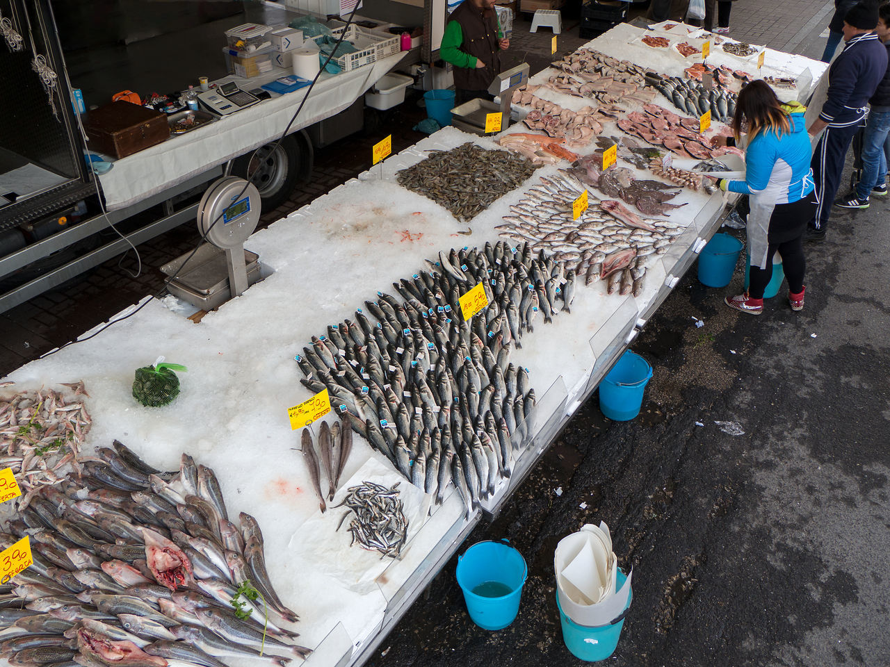 A Lot Of Fish Buying Choice Fish Flea Market Food Food And Drink Fresh Fish Fresh Fish Market Freshness Friday Fish Healthy Eating Iced Lifestyles Market Market Fish Market Stall Occupation Outdoor Market Outdoors People Retail  Selling Street Market