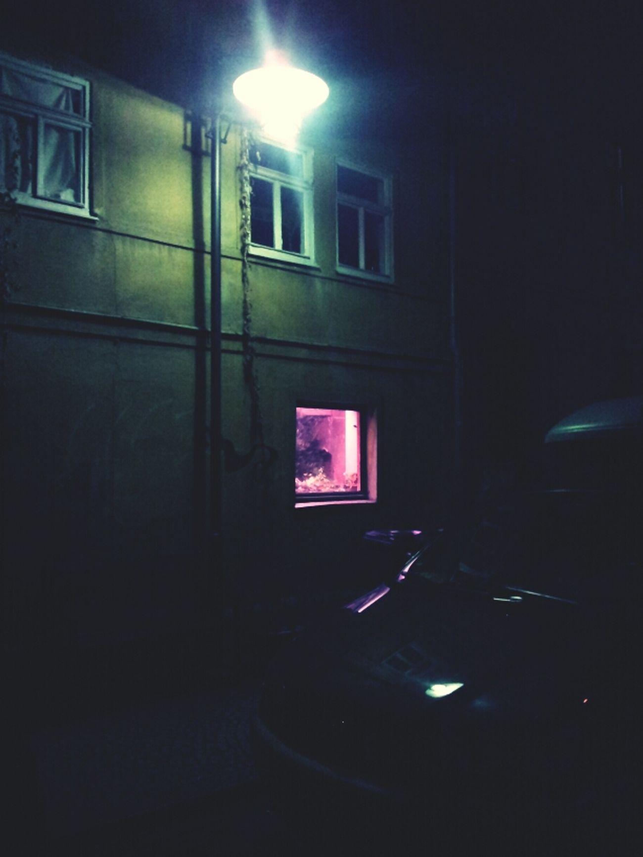 Strange scary window Scary Strange Window