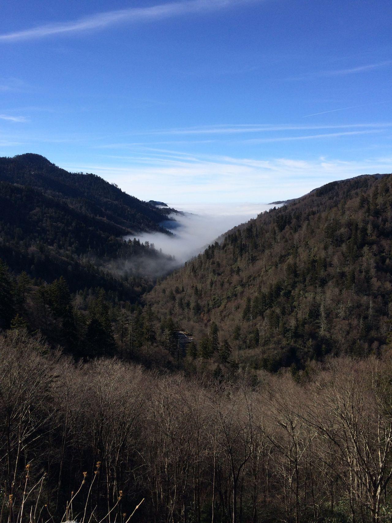 Mountain Fog Sky