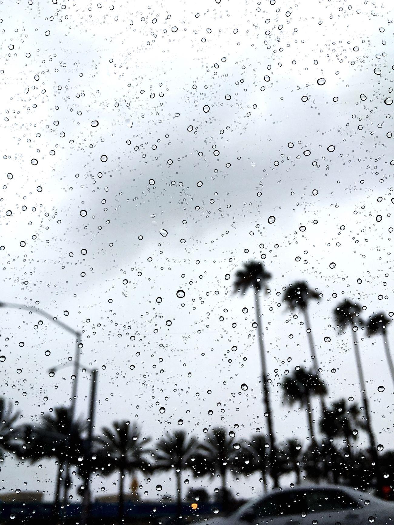 Rain Raindrops CarRides