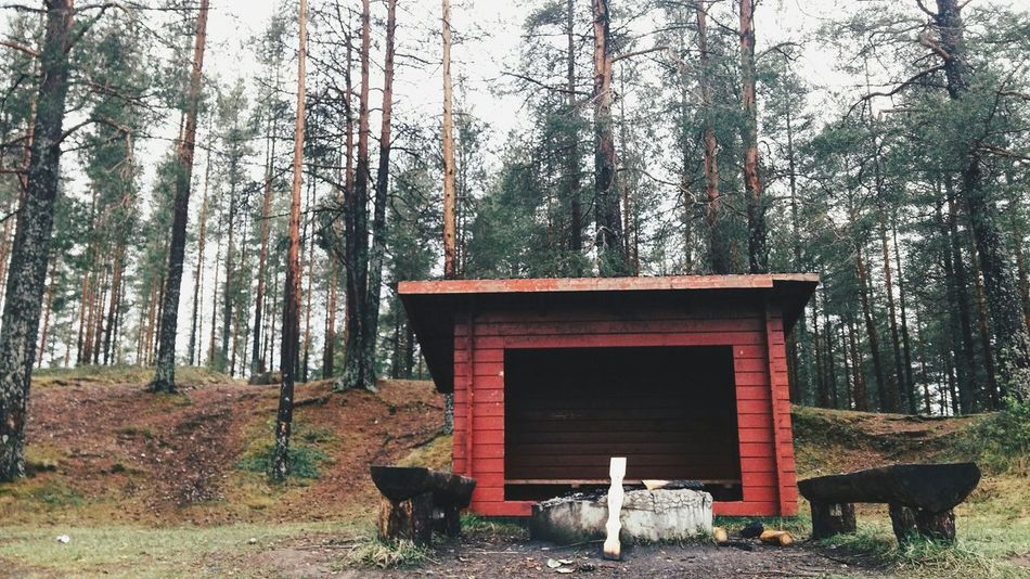 Beautiful stock photos of sweden, Bench, Day, Forest, Hut