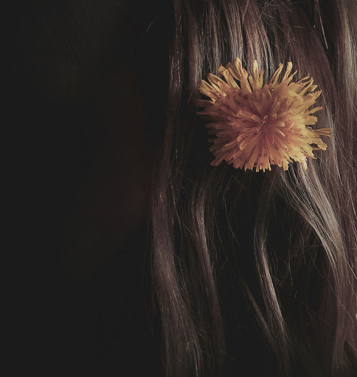 Beautiful Thursday to you! Beauty In Nature Black Background Dandelion Flower Flowers In My Hair Fragility Freshness Hair Nature Outdoors Petal Plant Random Springtime Woman Yellow