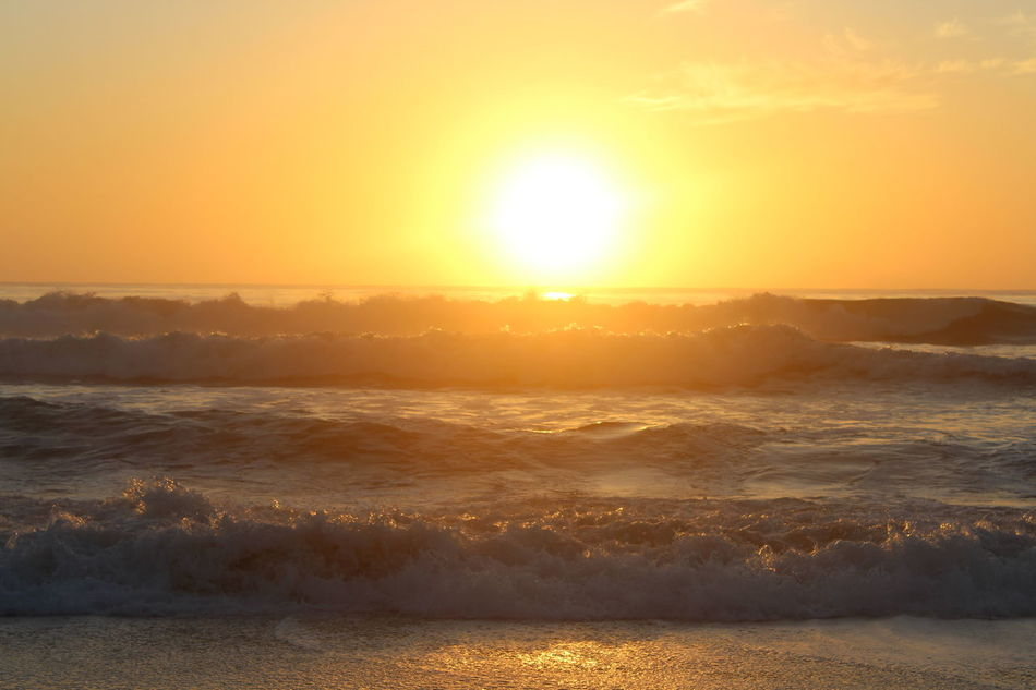 First photos of canon EOS 1200D. Going from a phone to a camera takes on a whole lot more work:) Capture The Moment EyeEmBestPics Goodmorningfrommylittlepartoftheworld Ladyphotographerofthemonth Life Is A Beach Me, My Camera And I Orange Color Pacific Ocean Showcase: January Sky Summer2016 Sunporn Sunrise Tadaa Community Waves, Ocean, Nature Canonphotography